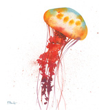 Deep Sea Jellies II Prints by Brent Paul