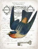 French Swallow I Posters par Gwendolyn Babbitt
