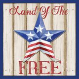 Patriotic Barn Star I Posters by Brent Paul