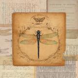 Vintage Dragonfly Sq. Prints by Washburn Lynnea