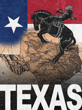 Texas Prints by Williams Todd