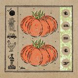 Tasty Tomatoes Prints by McCollum Sudi