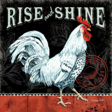 Rise and Shine Prints by Wright Sydney
