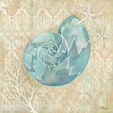 Laguna Shells II Prints by Brent Paul