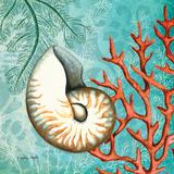 Nautilus Plakater af Wright Sydney