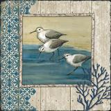 Sandpiper Shore II Affiches par Paul Brent