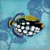 Azure Tropical Fish III Posters by Brent Paul