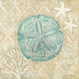 Laguna Shells IV Prints by Brent Paul