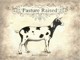 Pasture Raised Prints by Gwendolyn Babbitt