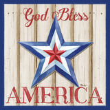 Patriotic Barn Star II Prints by Brent Paul