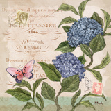 Parisian Hydrangeas II Posters by Paul Brent
