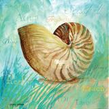 Marine Life Motif IV Prints by Gregory Gorham