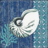 Indigo Sea IV Plakater af Brent Paul