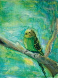 Parakeets II Posters by Palanuk-Wilson Denice