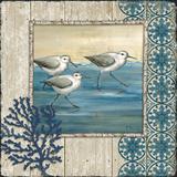 Sandpiper Shore I Posters par Paul Brent