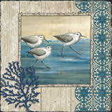 Sandpiper Shore I Posters by Paul Brent