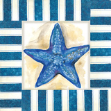 Nautical Starfish Prints by Margaret Ferry