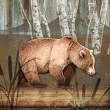 Sierra Bear Poster by Washburn Lynnea