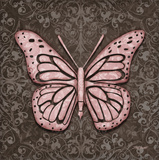 Pink Butterfly IV Posters by Todd Williams