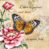 Inspire Butterfly IV Prints by Donna Knold