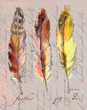 Three Feathers II Prints by Gregory Gorham