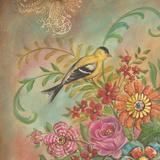 Splendid Botanical I Posters by Kate McRostie
