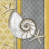 Santa Cruz Shells I Kunst af Brent Paul