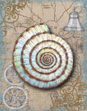 Nautical Treasures IV Prints by Donna Knold