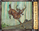 Lodge Deer Prints by Donna Knold