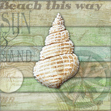 Sea Glass Shell I Posters by Charlene Audrey