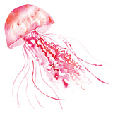 Pink Jellyfish Art by Sara Berrenson