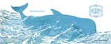 Whale on White I Prints by Gwendolyn Babbitt