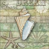 Sea Glass Shell II Art by Charlene Audrey