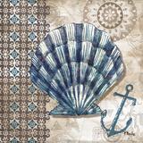 Tide Pool Shells II Prints by Paul Brent