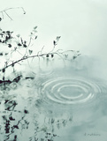 Ripples of the Rain III Print by Amy Melious