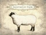 Sweetwater Farm Posters by Gwendolyn Babbitt