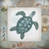 Nautical Turtle Schilderij van Washburn Lynnea