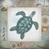 Nautical Turtle Posters by Washburn Lynnea