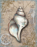 Nautical Treasures II Posters by Donna Knold