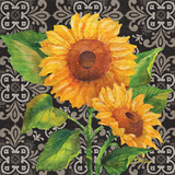 Sunflower Chic I Prints by Paul Brent