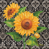 Sunflower Chic II Posters by Paul Brent