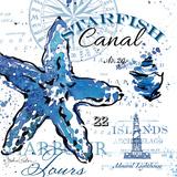 Starfish Canal Art by Paton Julie