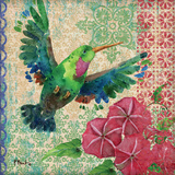 Zealous Hummingbird I Posters by Paul Brent