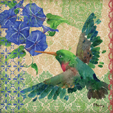 Zealous Hummingbird II Prints by Paul Brent