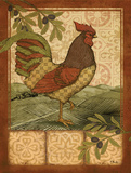 Tuscan Rooster II Prints by Brent Paul