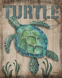 Turtle Poster by Todd Williams