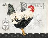 Poultry Farm II Prints by Babbitt Gwendolyn