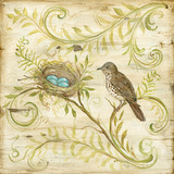 Nature's Nest II Art by McRostie Kate