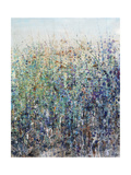 Flower Patch Giclee Print by Tim O'toole