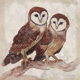 Two Owls II Prints by Lisa Ven Vertloh